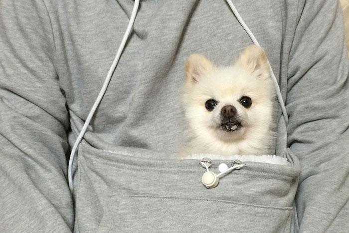 hoodie-cat-pouch-pocket-sweatshirt-mewgaroo-9