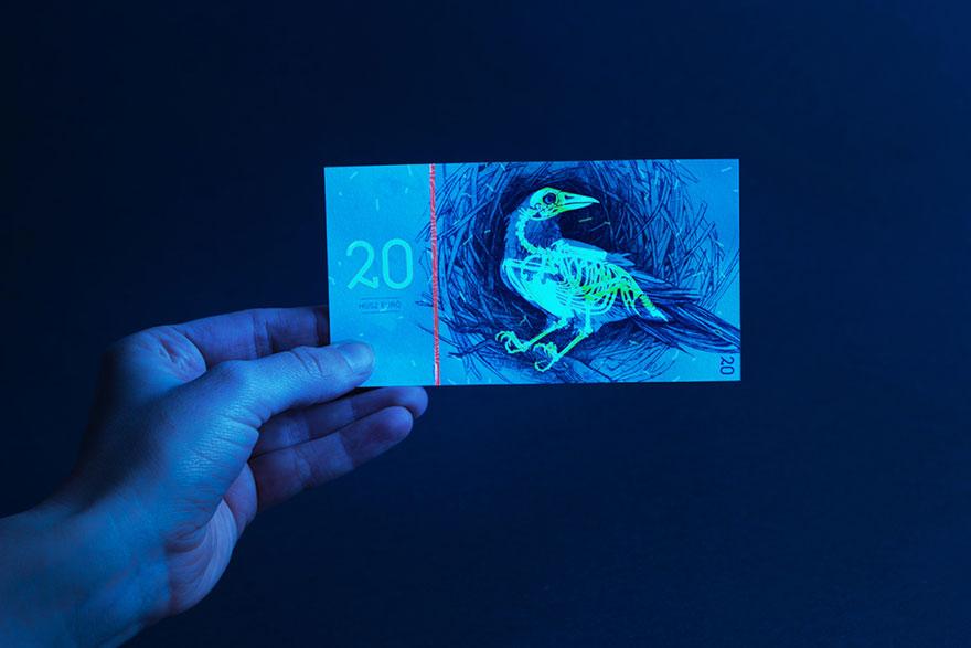 Невероятные банкноты евро, какими они могли бы быть
