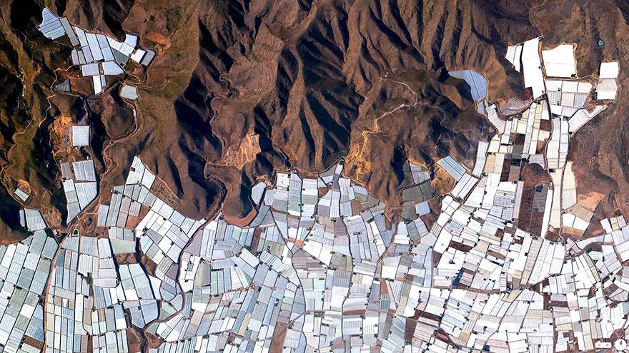 Теплицы, Альмерия, Испания