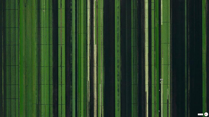 Сельское хозяйство, Локсахатчи, Флорида