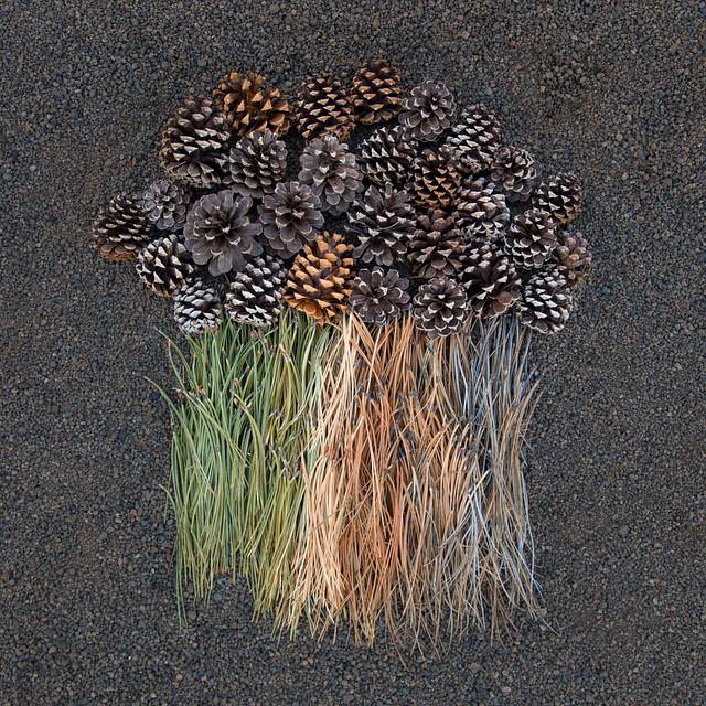 everyday-objects-arrangements-emily-blincoe-17