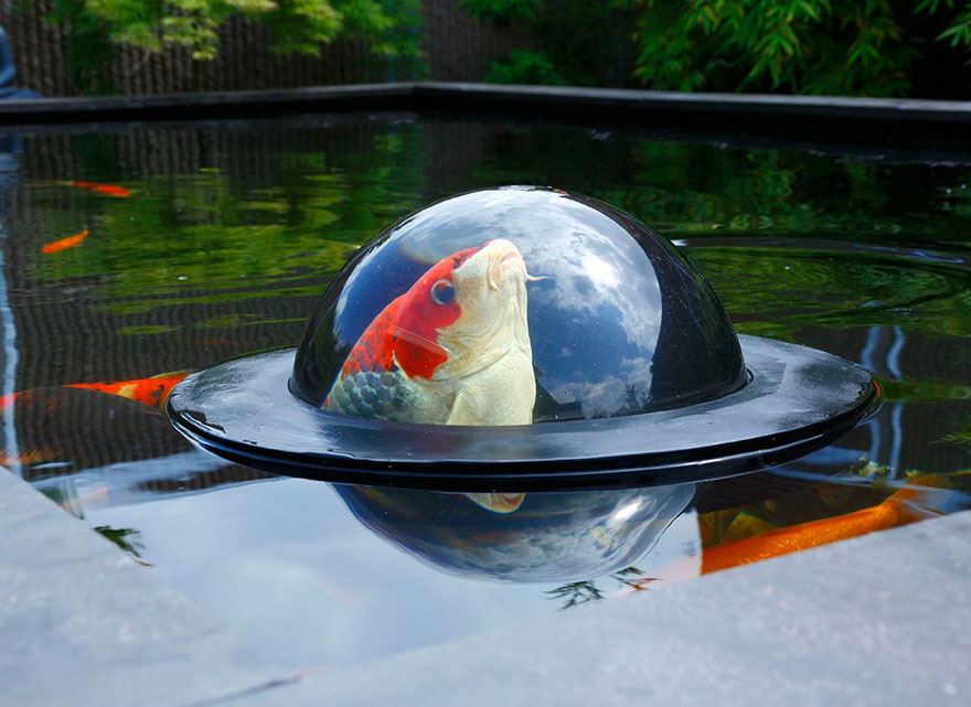 floating-fish-dome-out-of-water-velda-1
