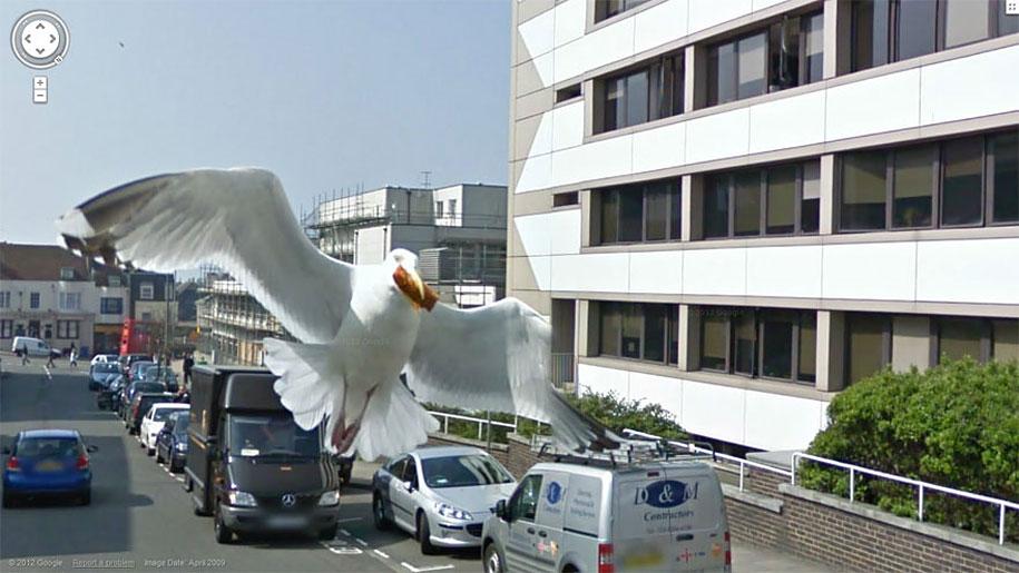 20 невероятных кадров из Google Street View