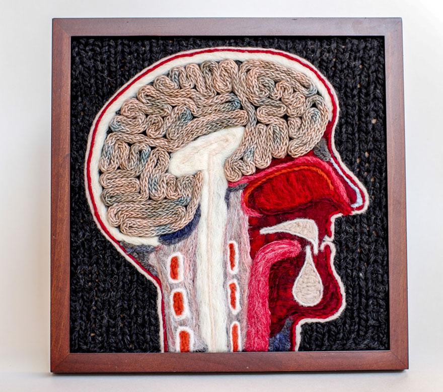 knit-animal-dissection-anatomy-emily-stoneking-aknitomy-16