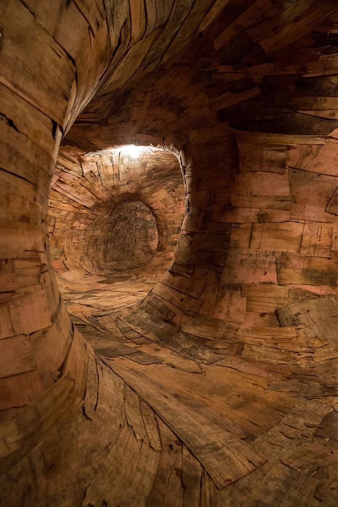 root-system-tunnel-transarquitetonica-henrique-oliveira-8