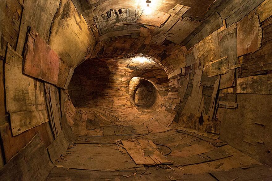 root-system-tunnel-transarquitetonica-henrique-oliveira-9