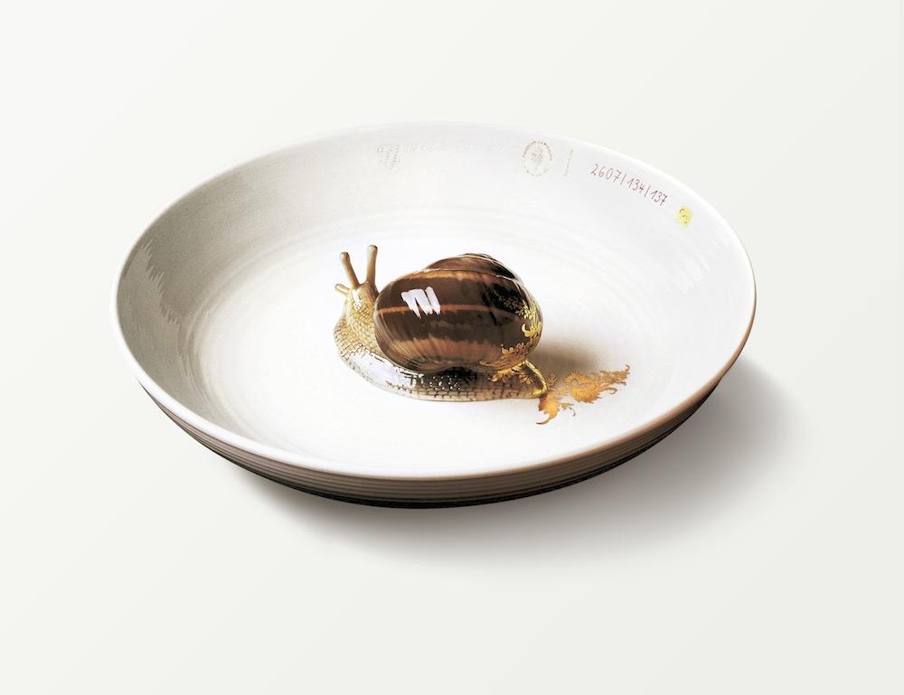 snail-new