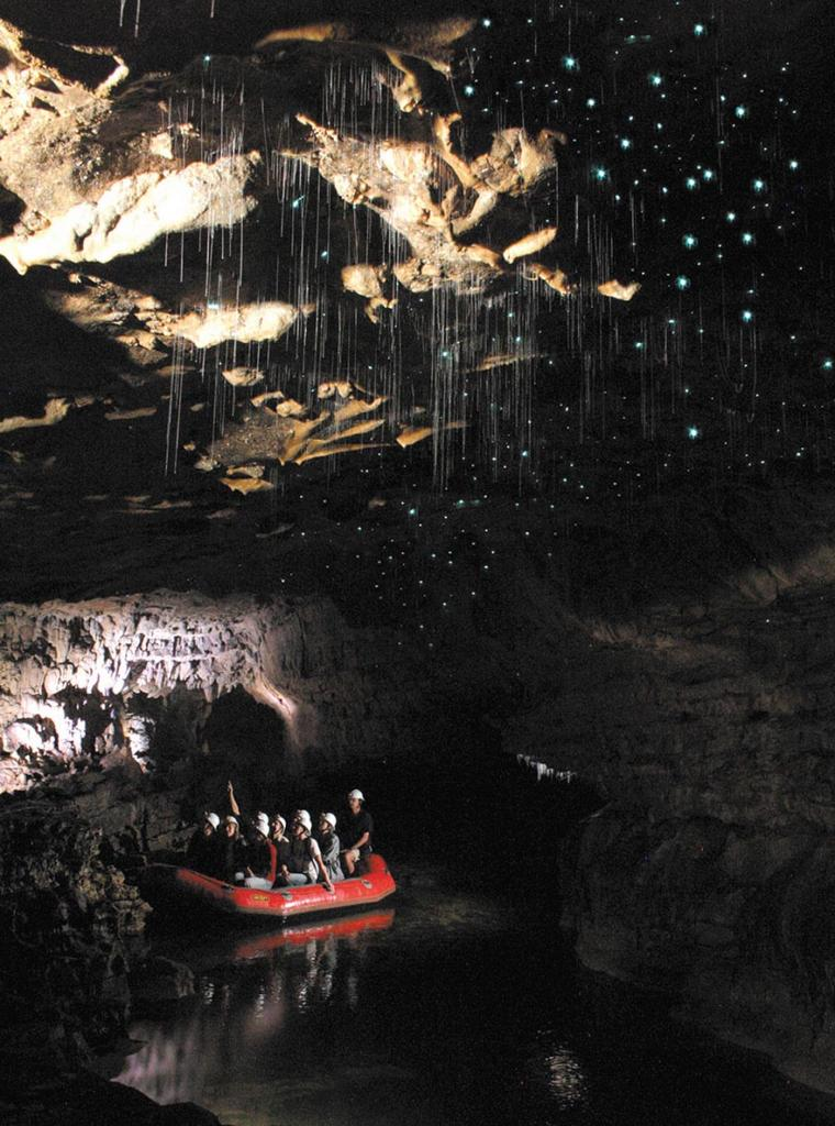 waitomo-glowworm-caves-new-zealand-11