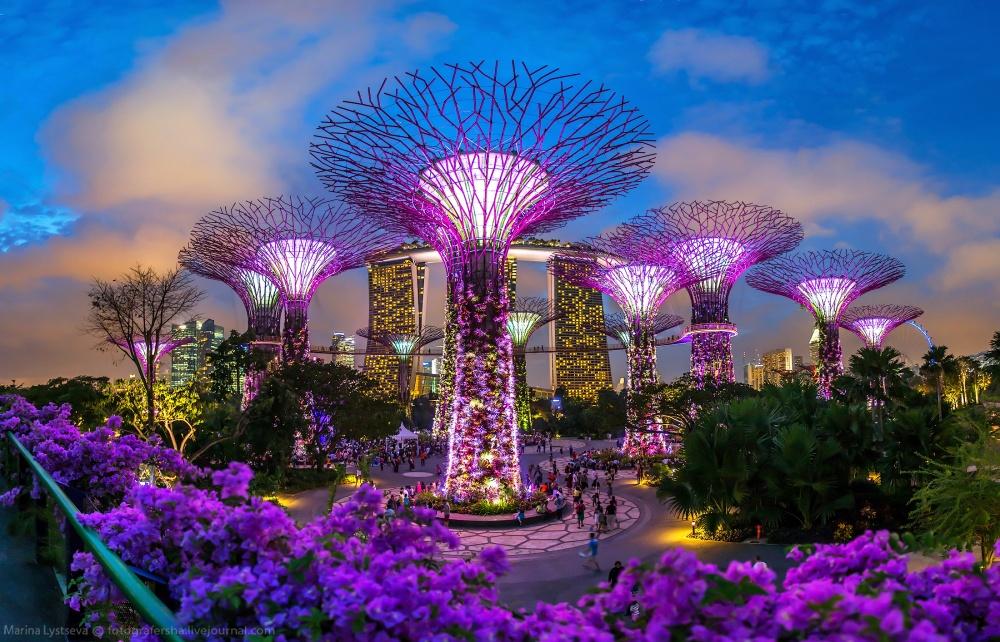 «Сады у залива», Сингапур