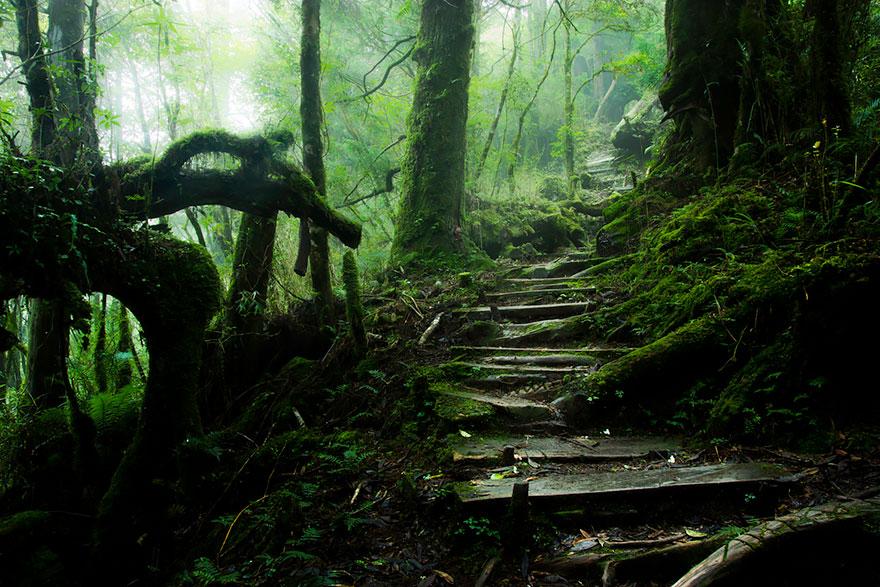 Горная тропа, Тайвань