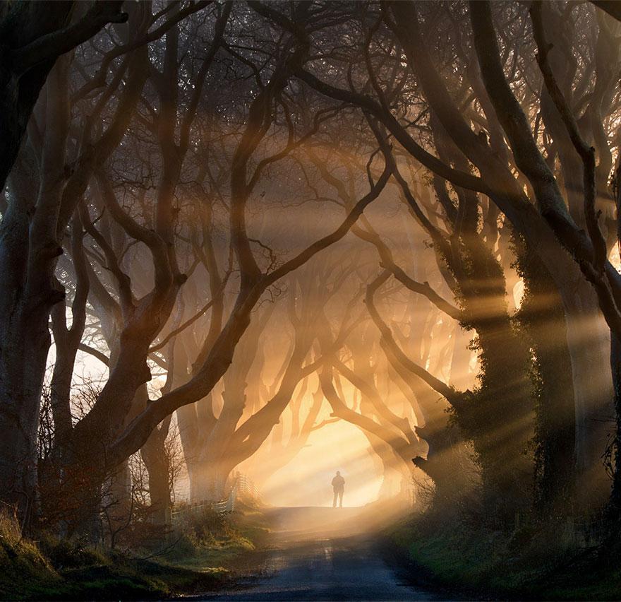 Дарк Хеджес, Ирландия