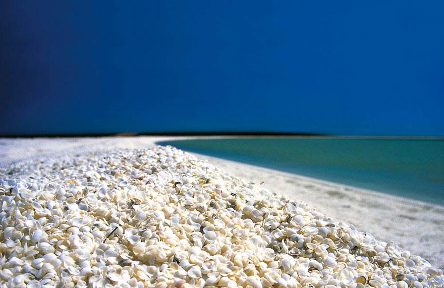 Залив Шарк, Австралия