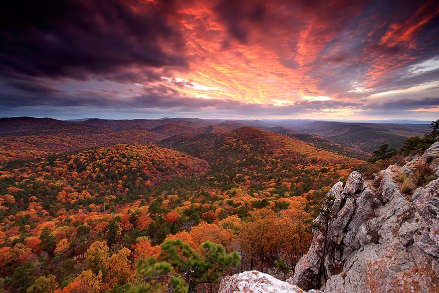 Национальный заповедник Уачита, штат Арканзас, США