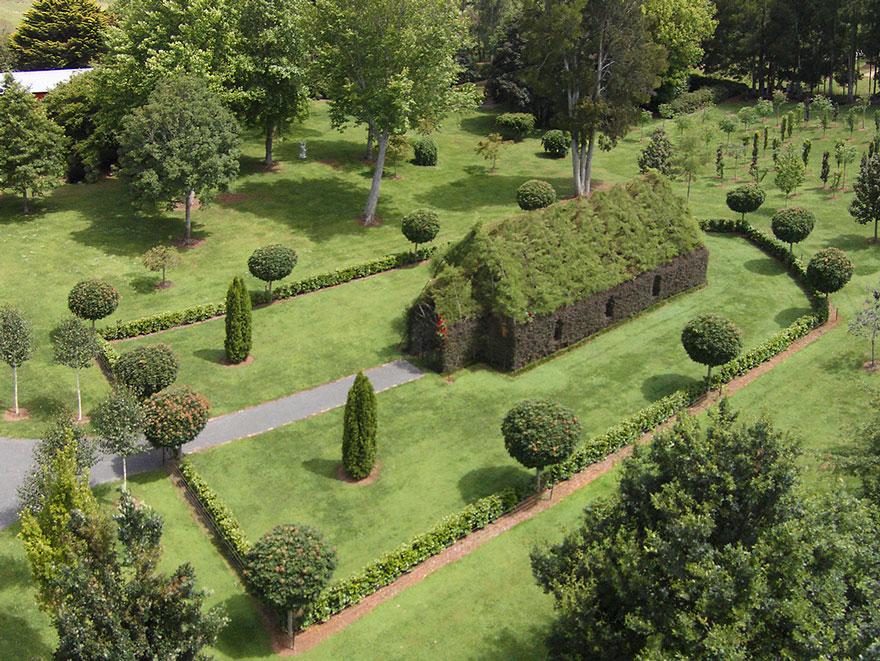 Новозеландец вырастил церковь у себя в саду