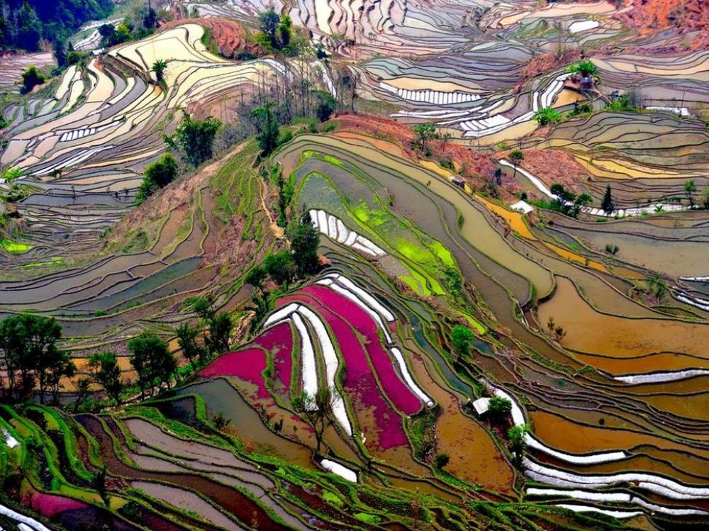 Юаньян, Китай