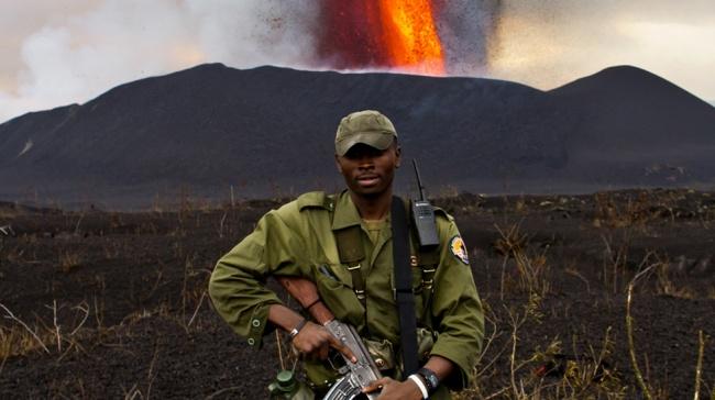 Группа смельчаков рискует собственной жизнью, чтобы спасти последнего в мире представителя вида горных горилл, в разгар новой гражданской войны в Конго. Этот документальный фильм выглядит как прекрасное игровое кино — мощное и насыщенное.