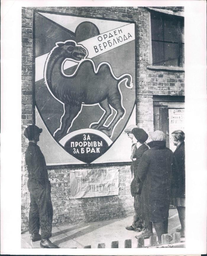 ������� � �����������. 1931 ���.