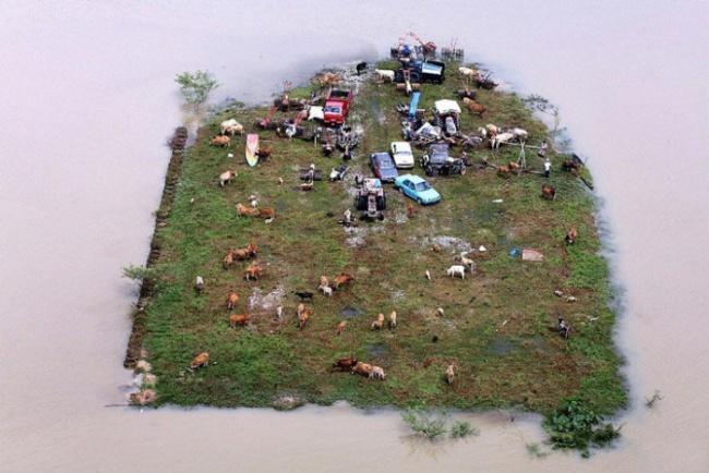 Это не диорама. Это реальный островок, заполненный спасающимися от наводнения в Малайзии.