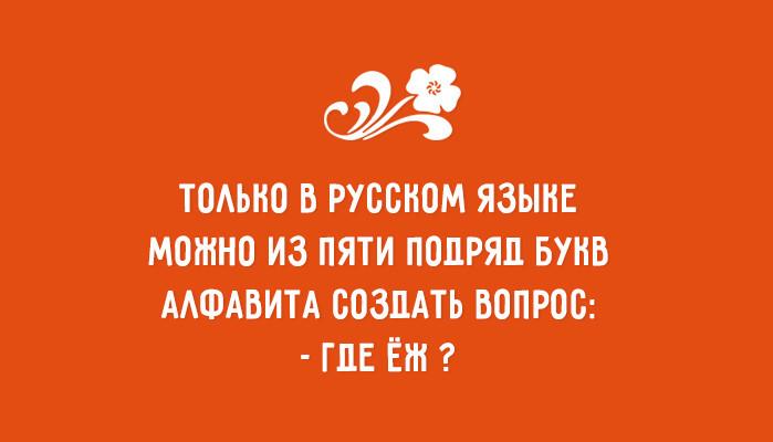 Богатство русского языка – самые оригинальные высказывания
