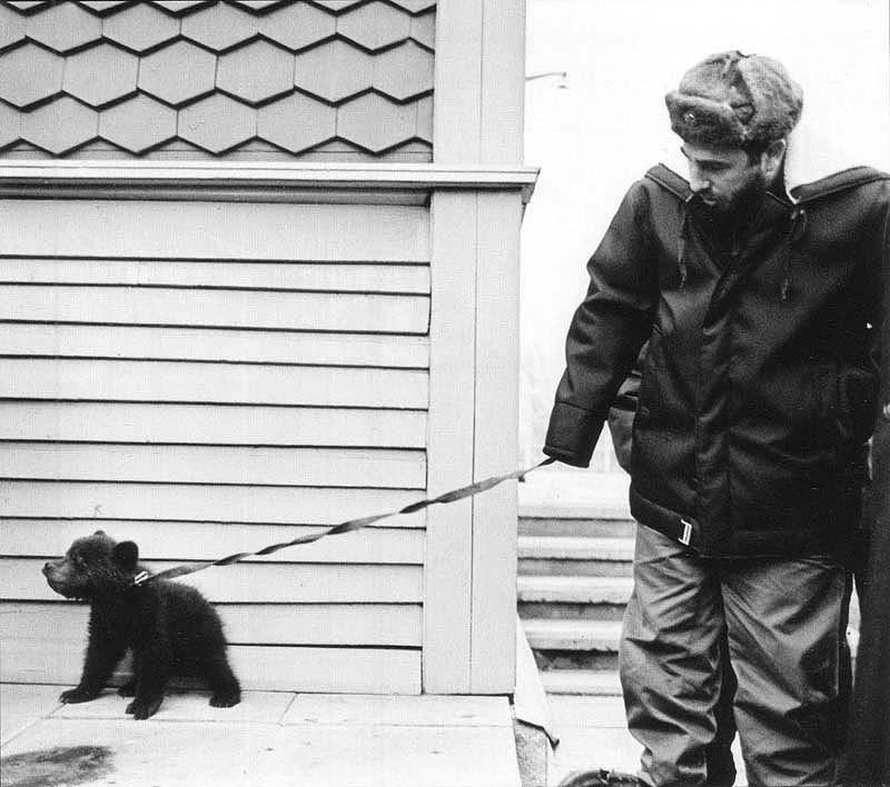 Фидель Кастро с медвежонком по имени Байкал, подаренным ему сибирскими геологами. Медвежонок отправился вместе с новым хозяином на Кубу, но, к сожалению, не смог адаптироваться к непривычному тропическому климату