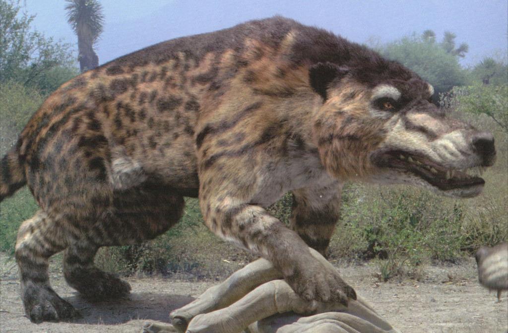 Возможно, самое крупное вымершее наземное хищное млекопитающее, обитавшее в эпоху среднего — позднего эоцена в Центральной Азии. Эндрюсарха представляют длиннотелым и коротконогим зверем с огромной головой. Длина черепа 83 см, ширина скуловых дуг — 56 см, но размеры могут быть гораздо больше. Согласно современным реконструкциям, если предположить относительно большие размеры головы и меньшую длину ног, то длина тела могла доходить до 3.5 метров (без 1.5 метрового хвоста), высота в плечах — до 1.6 метров. Вес мог достигать 1 тонны. Эндрюсарх — примитивное копытное, близкий к предкам китов и парнокопытных. Эндрюсарх жил от 45 до 36 млн. лет назад.