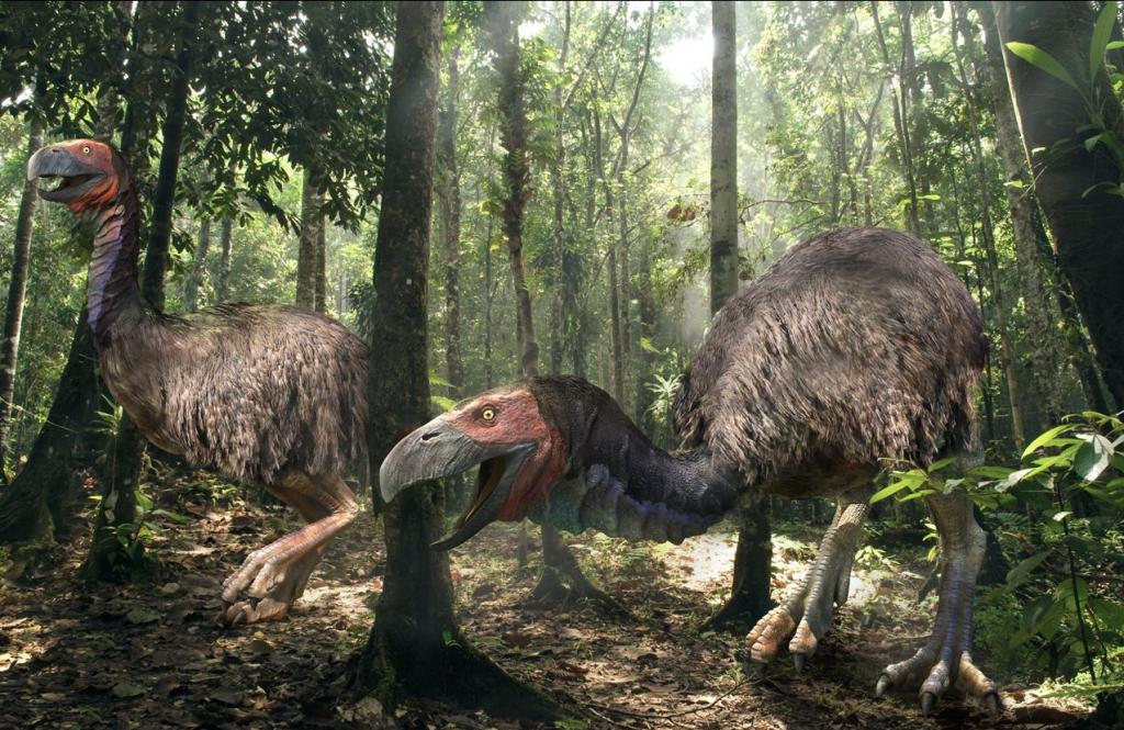 Известные как фороракосовые, эти птички были главными хищниками в Южной Америке и в некоторых областях Северной во время миоценового, плиоценового и плейстоценового периода. Затем их заменили большие кошки и другие плотоядные млекопитающие. Фороракосовые не могли летать, но зато они очень быстро бегали (согласно некоторым ученым, так же быстро, как гепард). Они были очень большие, до 3 м в высоту и массой до полтонны! Их главным оружием была голова длиной до 1 м, что позволяло им целиком проглатывать добычу размером с собаку. Но что самое страшное, благодаря загнутому клюву ужасные птицы могли убить и съесть животное размером с лошадь.