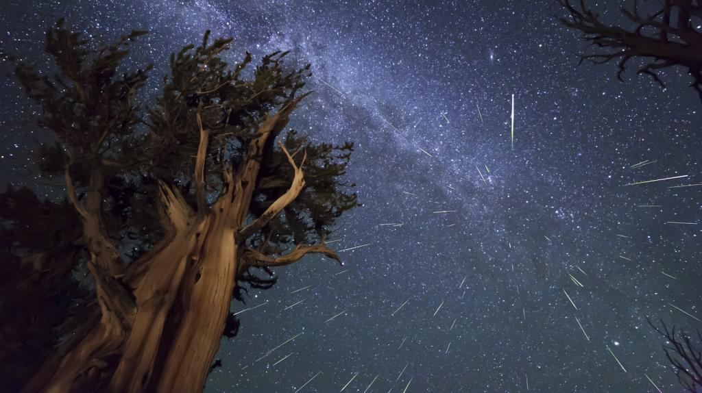 Персеиды - это метеорный поток, который появляется каждый год в августе со стороны созвездия Персея.