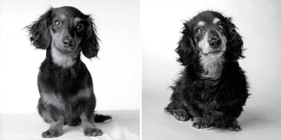 Лили — 8 месяцев и 15 лет