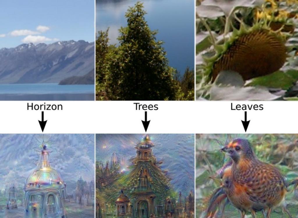 В ходе других испытаний сотрудники Google сказали сети ИИ производить случайные изображения без подсказок, основываясь лишь на случайных нейронных воспоминаниях, присутствующих в статической памяти.