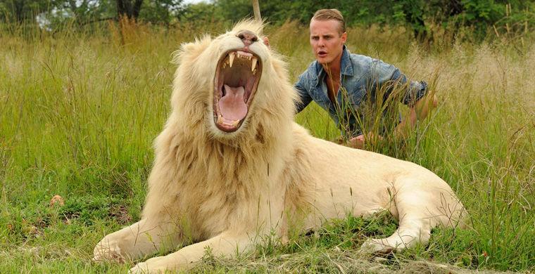 Близьке спілкування туристів з хижаками відбувається під контролем гіда, який має 15-річний досвід роботи з левами.  Прогулянка з дикими кішками, як повідомляють організатори, привертає увагу людей з усіх частин світу, має хороші рекомендації від їхніх клієнтів.