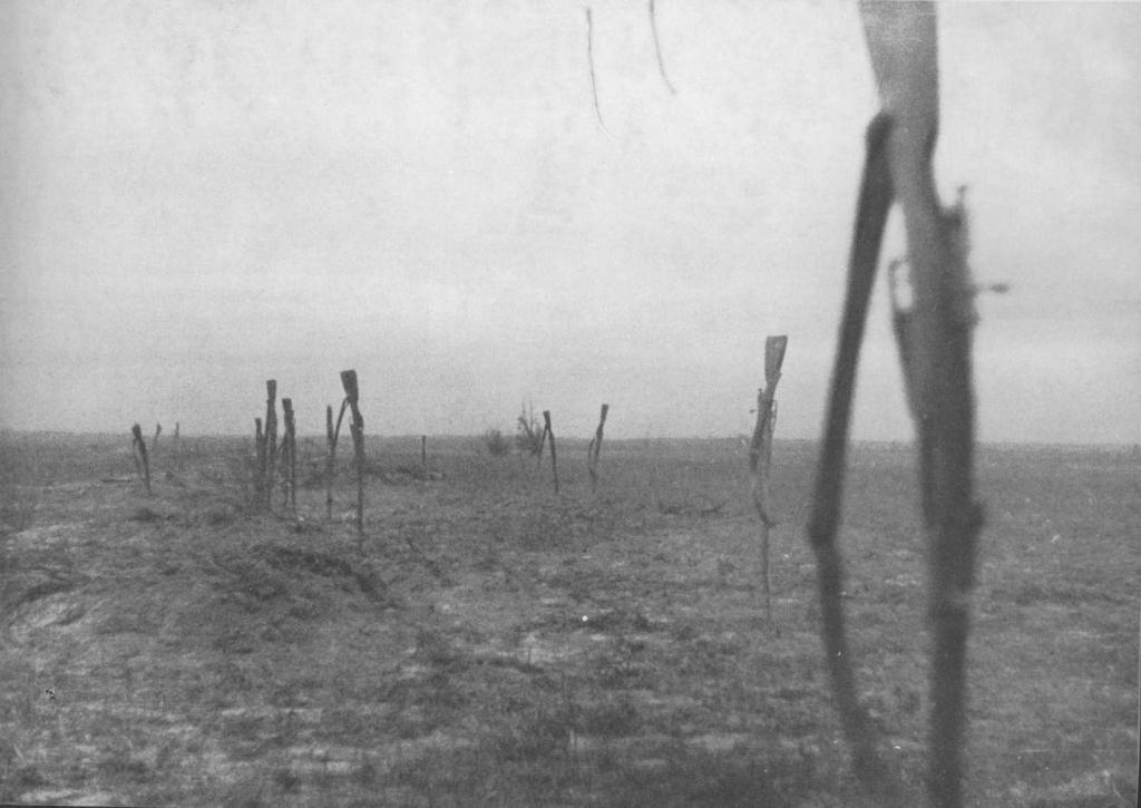 Винтовки сдавшихся в плен советских солдат.