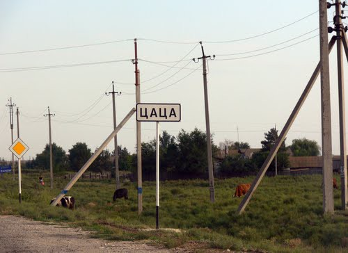 Деревня в Светлоярском районе Волгоградской области