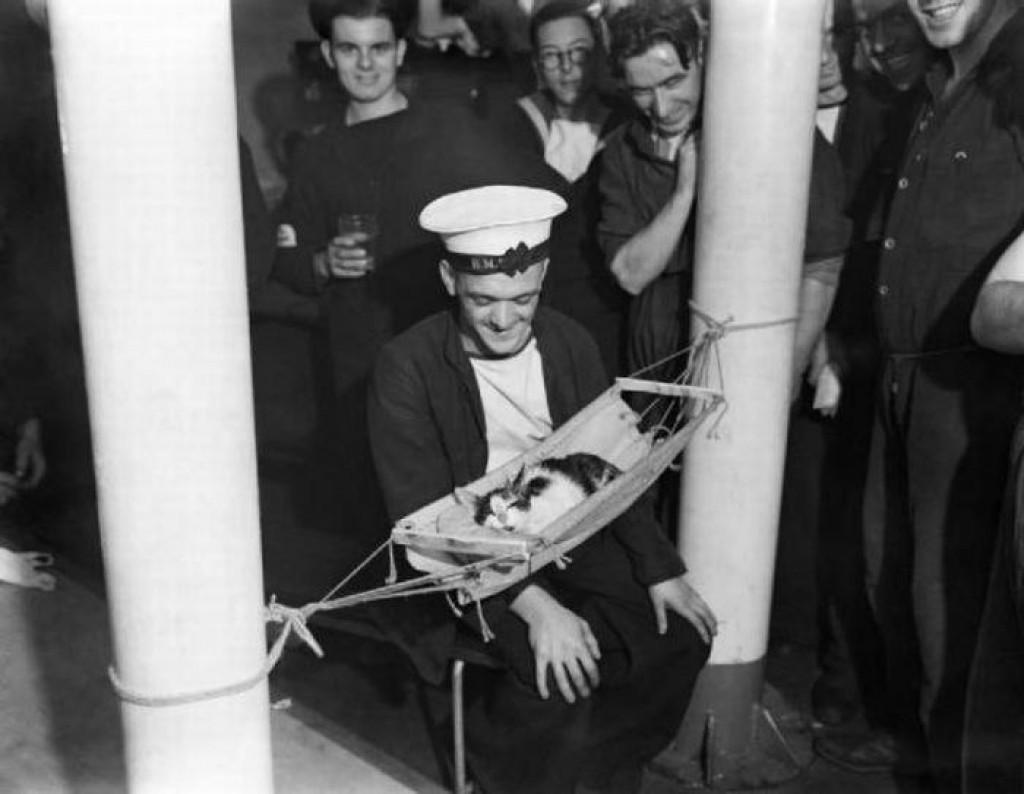 """Моряки крейсера HMS Hermione собрались вокруг корабельного кота """"Конвой"""". Средиземное море. 1941 год."""