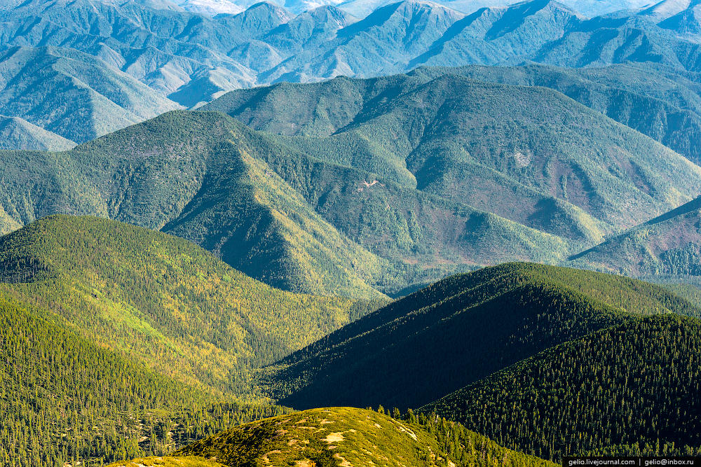 Склоны Хамар-Дабана, примыкающие к юго-западному берегу озера Байкал, являются самым влажным местом в Прибайкалье.