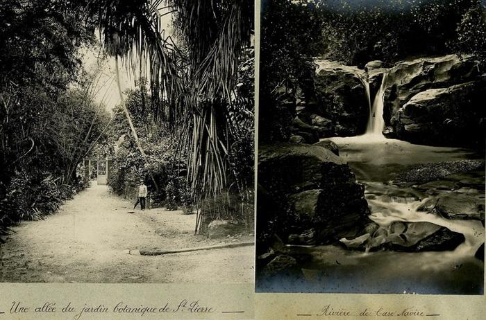 Martinica-4