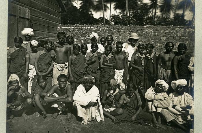 Martinica-8