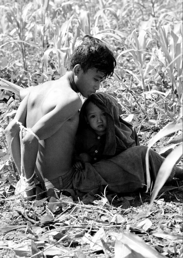 Вьетнамский ребенок цепляется за своего отца, который был задержан и связан, как подозреваемый в содействии партизанам Северного Вьетнама, 1966 год.