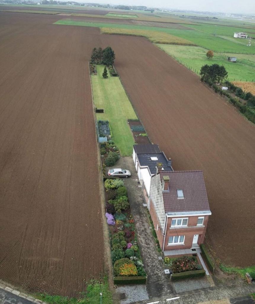 Когда есть частный дом и немного земли для посадки картошки.