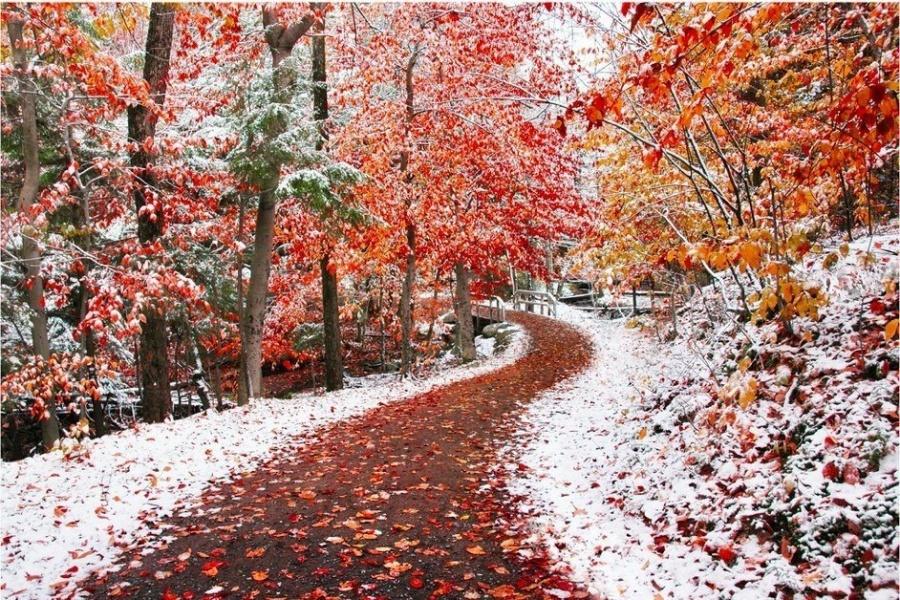 Когда встречаются зима и осень