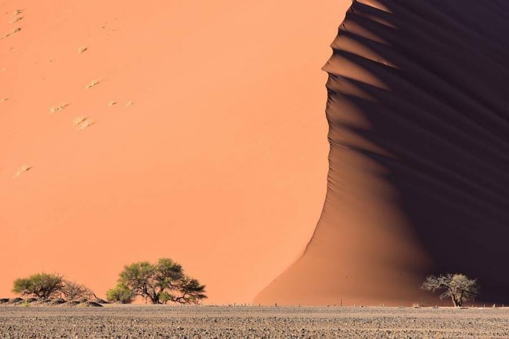 Море пустыни Намиб