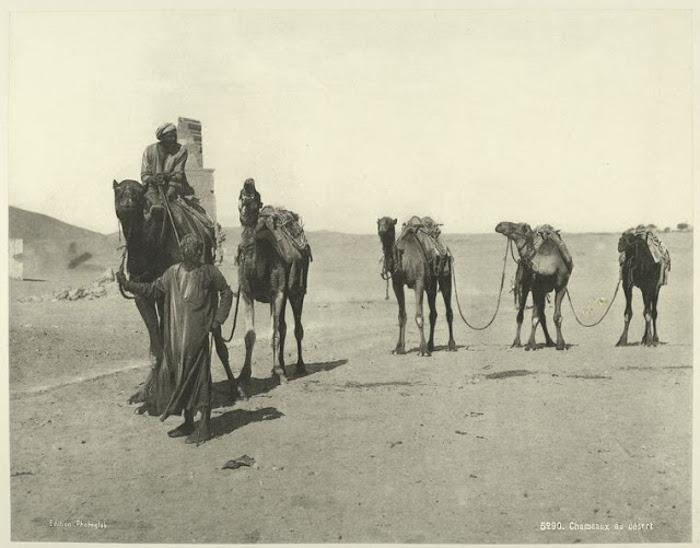 vintage-egipet-05