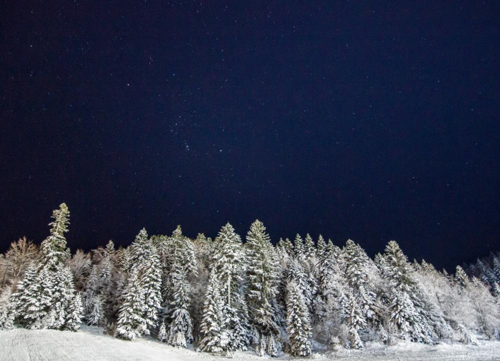 Звездное зимнее небо.