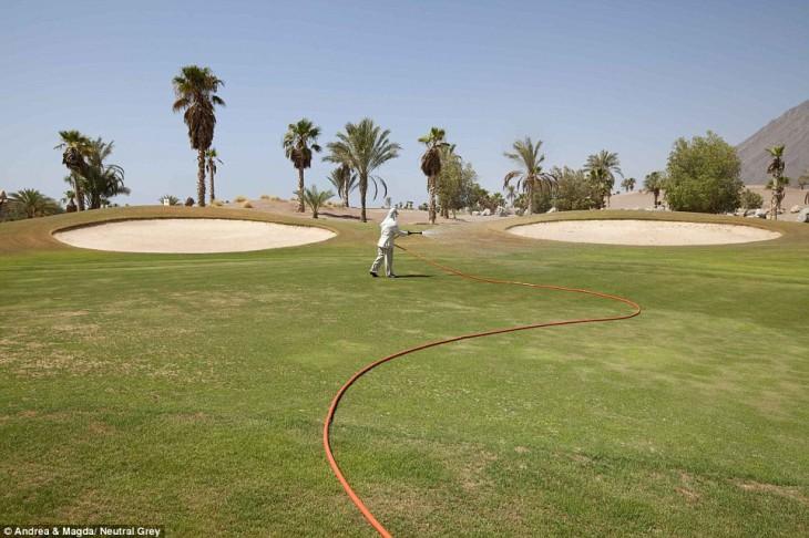 За некоторыми полями для гольфа всё ещё присматривают