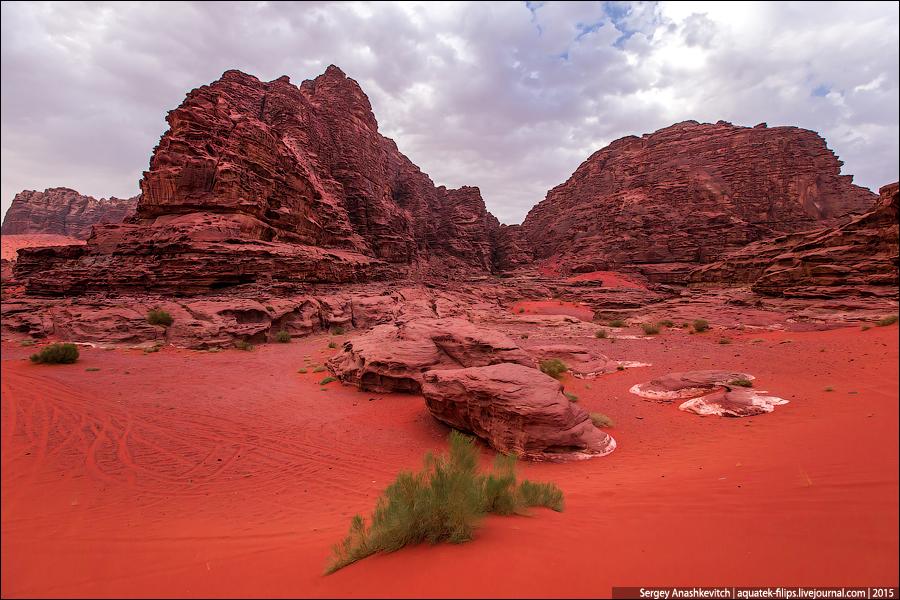 Пустыня Вади Рам далеко не безжизненна. Здесь издавна живут бедуины вместе со своими верными помощниками верблюдами.