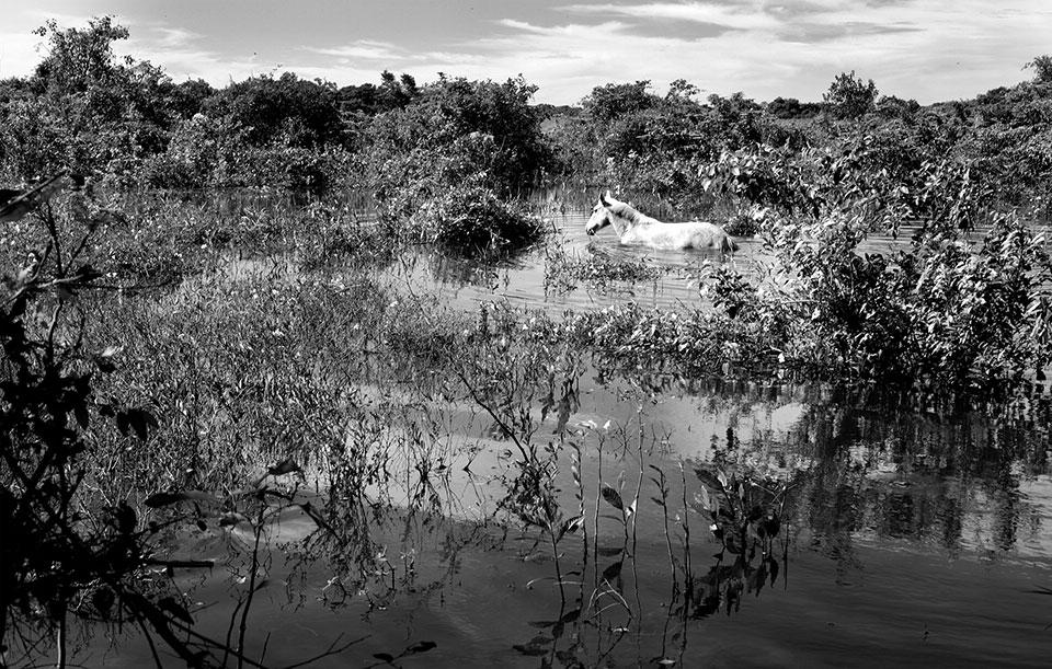 Пантанал, Бразилия: Люди реки.