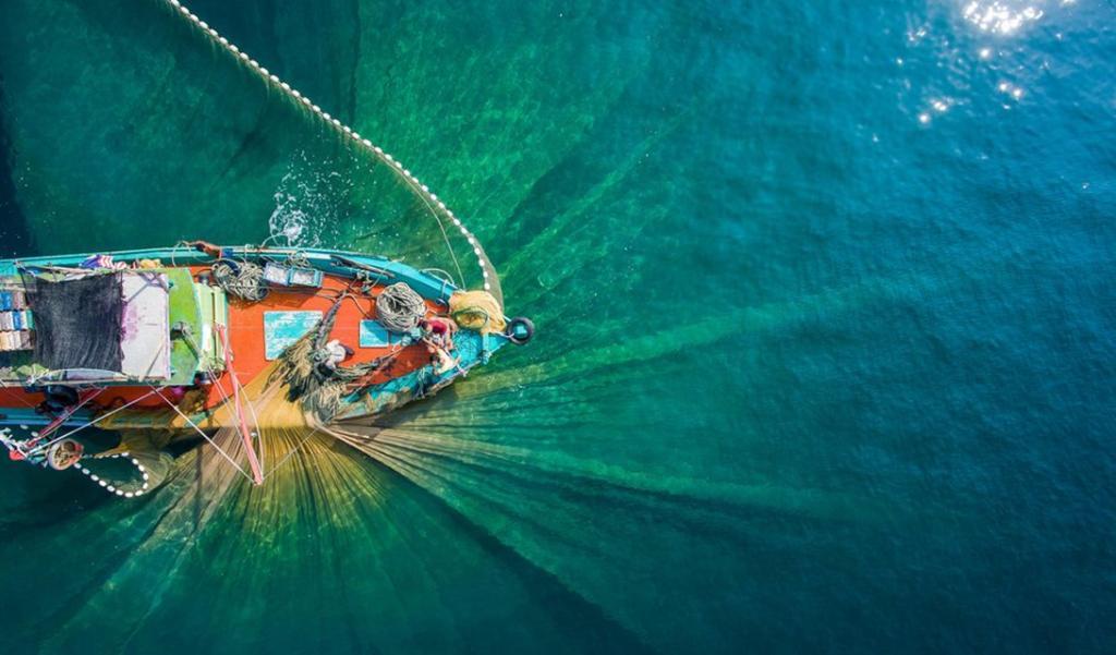 Рыбаки за работой