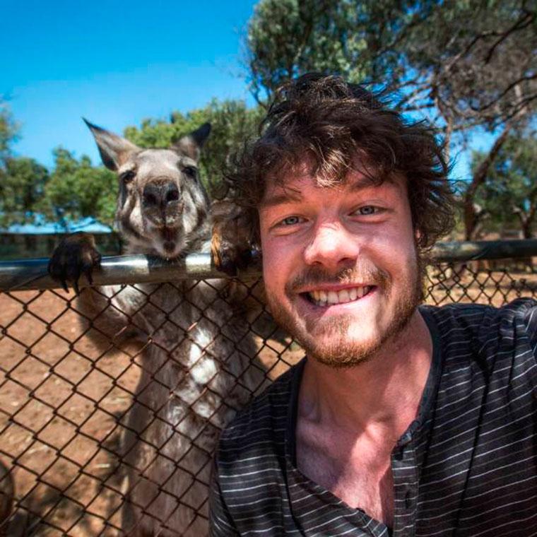 Ирландец Аллан Диксон (Allan Dixon) известен как самопровозглашенный «укротитель животных». Аллан наполнил свой Instagram  снимками, на которых его ухмыляющееся лицо можно увидеть рядом с кенгуру, пони, верблюдами и квокками. Но сделать подобные селфи с животными очень сложно. Как же тогда это удается Аллану?