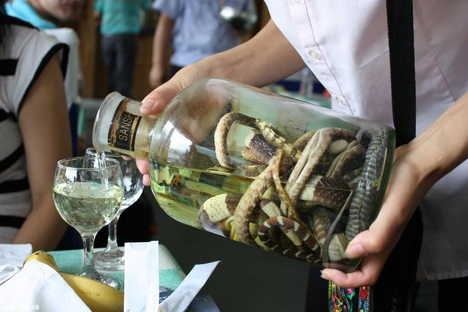 Вино из змеи