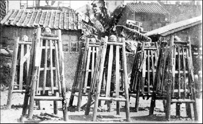 Бамбуковые клетки для людей.
