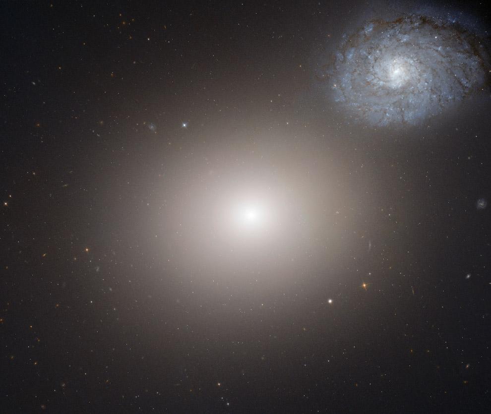 эллиптическая галактика M60